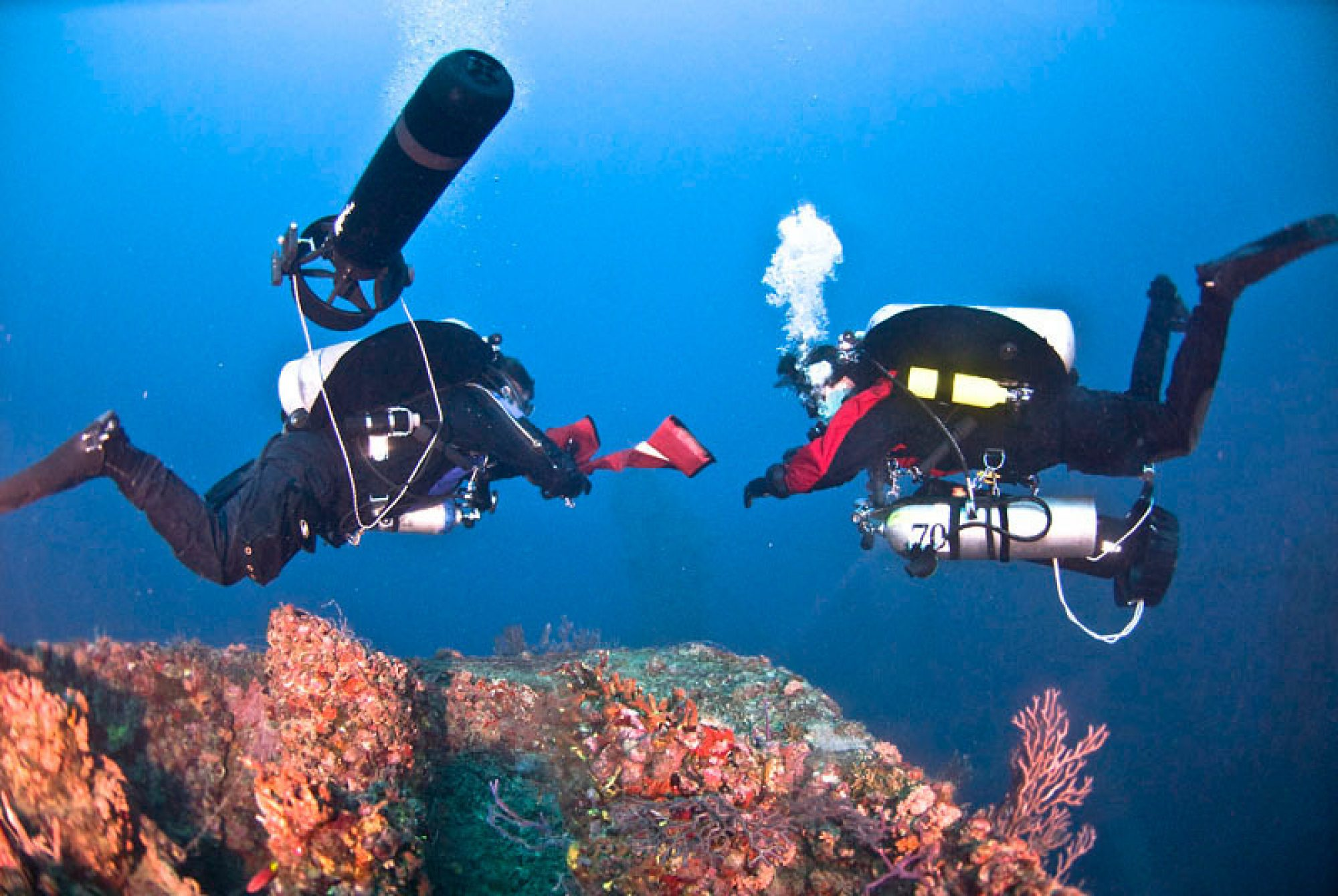TDS Divers